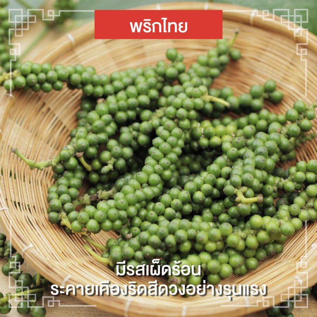 พริกไทย : พริดไทย ทำให้ริดสีดวงเกิดอาการระคายเคืองได้